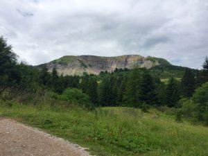 Monte Peller