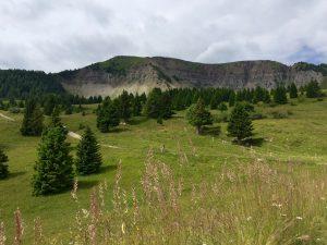 Vista verso monte Peller