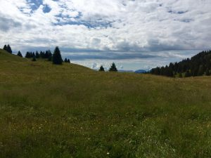 Vista in montagna