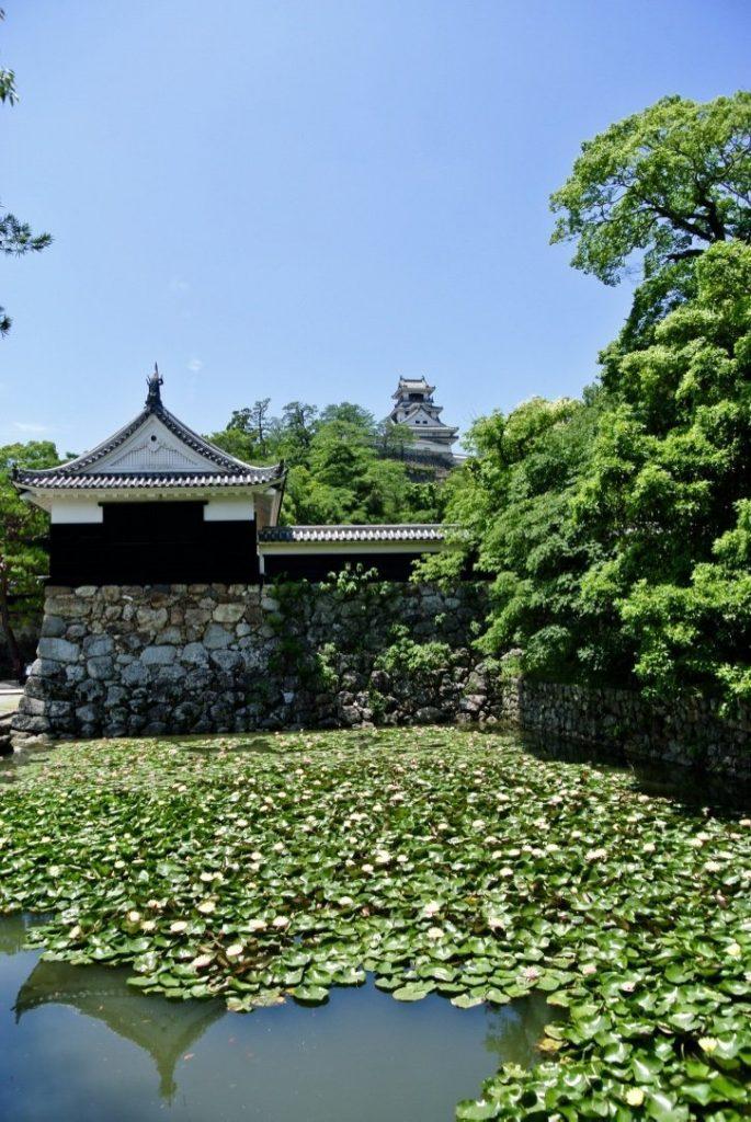 Kochi entdecken: Castle Kochi