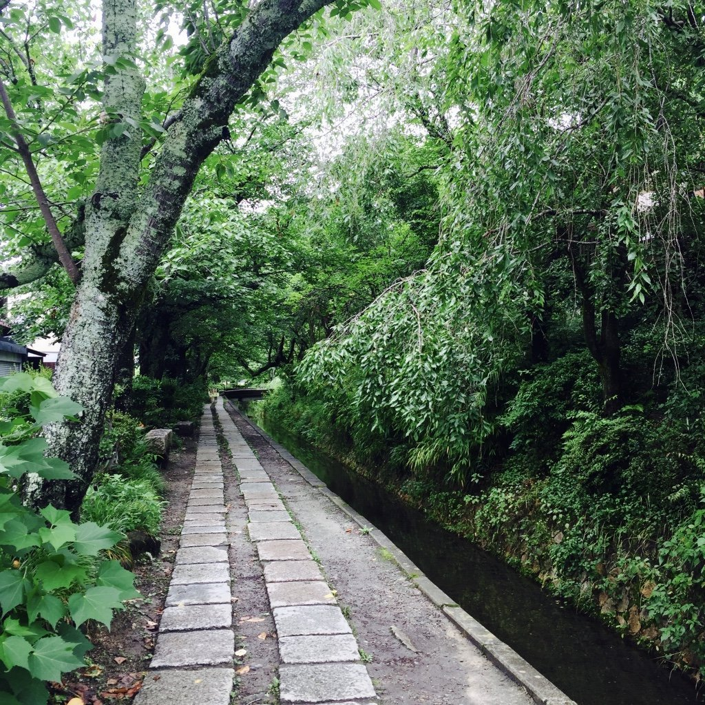 Kyoto erkunden - Philosophenweg
