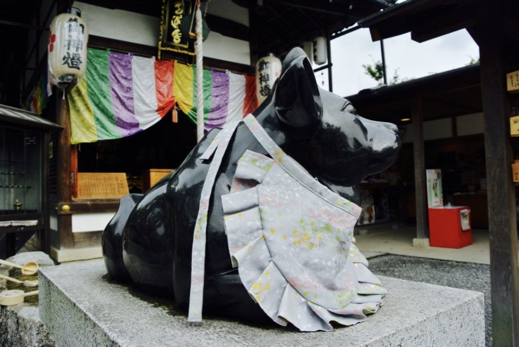 Kyoto erkunden