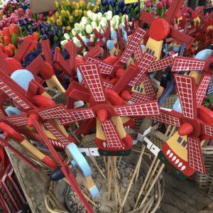 Mein Amsterdam erleben - Windmühlen