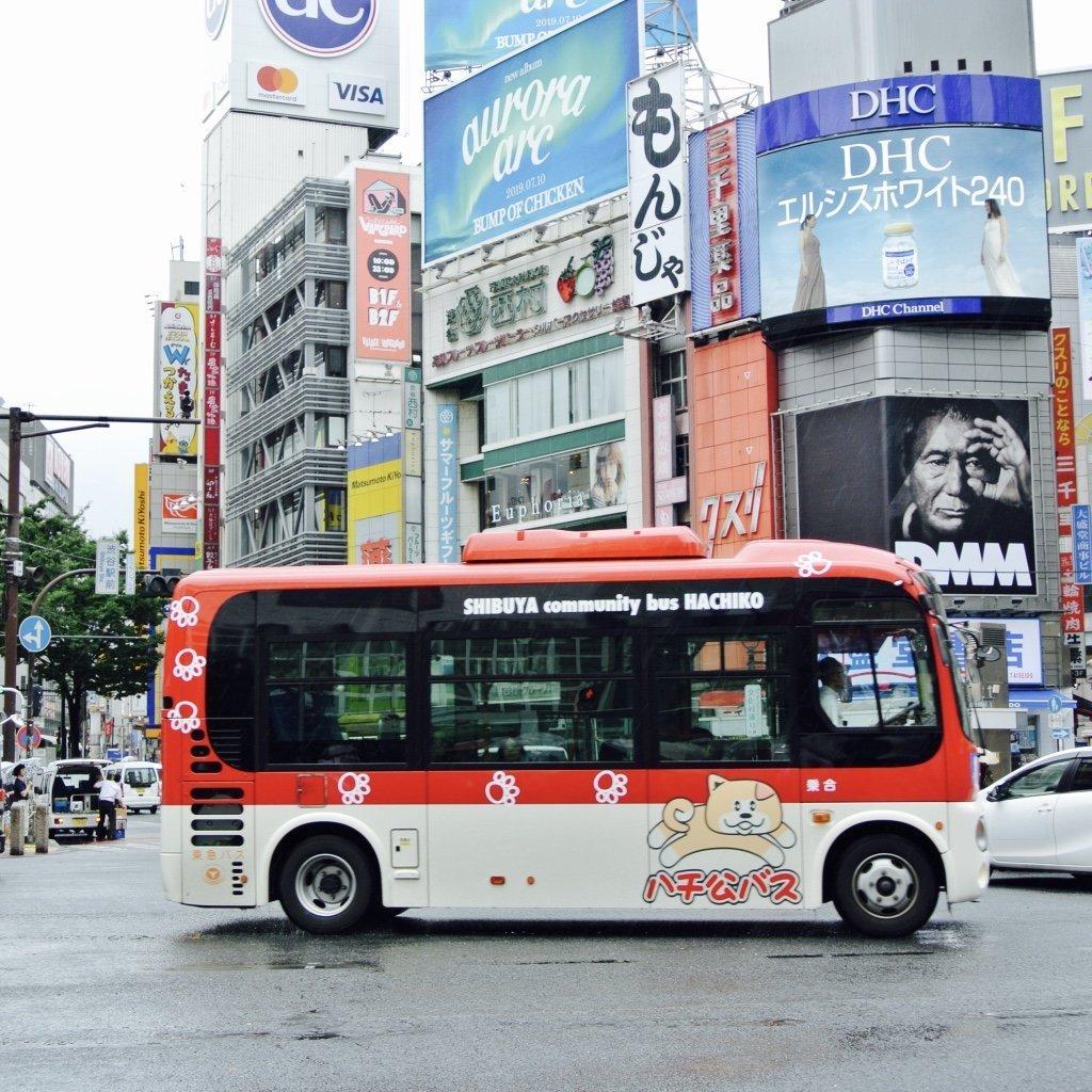 Tokyo erkunden in Shibuya