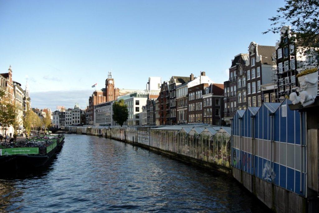 Mein Amsterdam erleben - Blumenmarkt