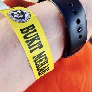 Ausflug von Costa Tours zu den Orang Utans von Bukit Merah. Armband.