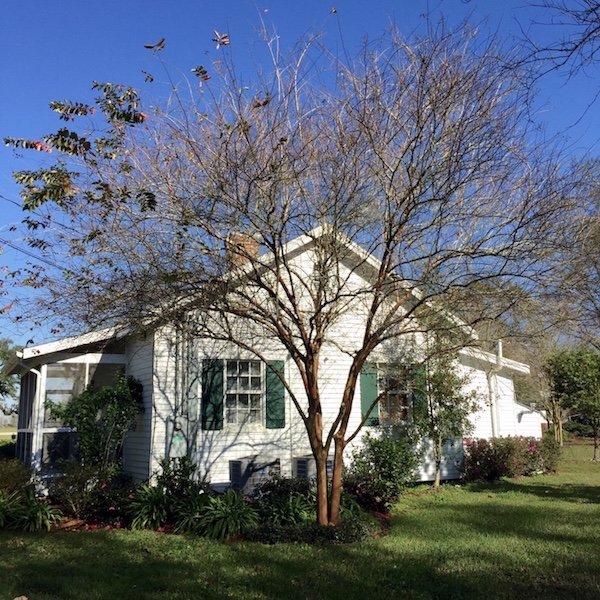 Cottage 5B - Ausflug und eine Nacht auf Oak Alley Plantation in Louisiana