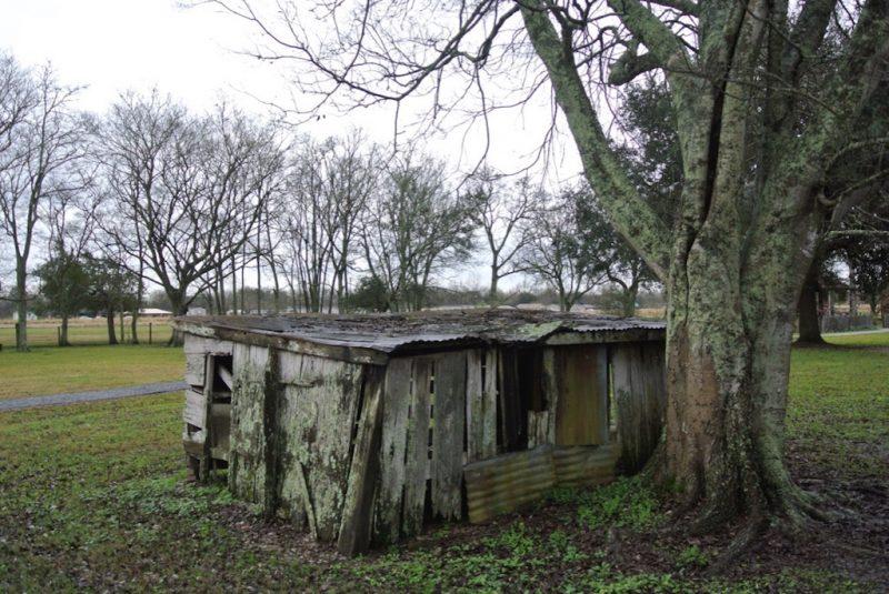 Besuch der Laura Plantation Louisiana