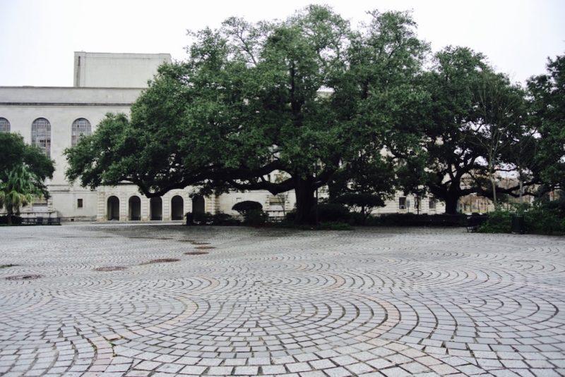 New Orleans im Louis Armstrong Park grosser Platz mit riesiger Virginia Eiche im Hintergrund