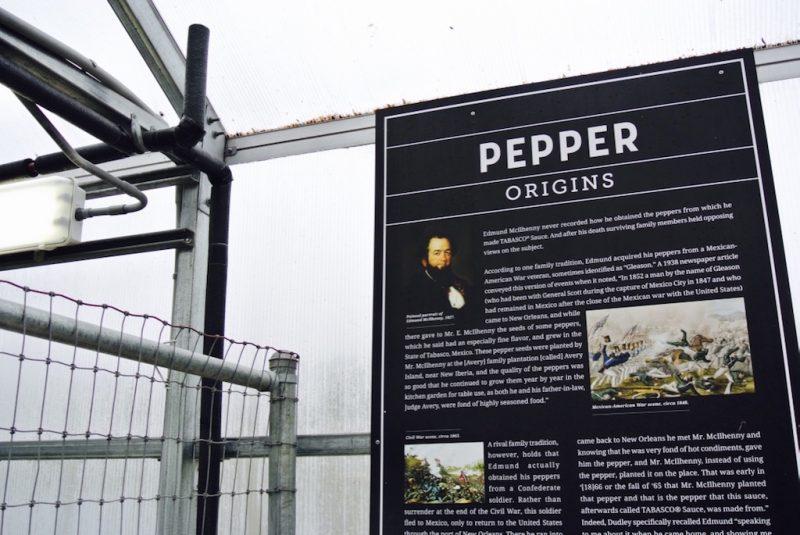 Auf Avery Island, im Gewächshaus, Erklärungstafel zu pepper