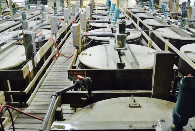 Avery Island, in der Fabrik, Fässer wo geblendet wird