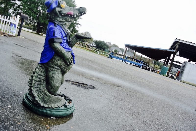 Louisiana Swamp Tours Parkplatz mit falschem Alligator