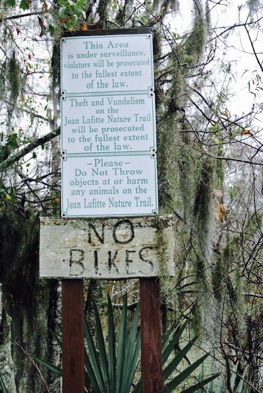 Unterwegs im Jean Lafitte Nature Park auf dem Wetland Trail, Sicht auf Natur, Bäume und Sumpfgebiet