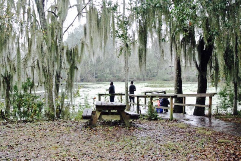 Unterwegs im Jean Lafitte Nature Park auf dem Wetland Trail, Sicht auf Natur, Bäume, Sumpfgebiet, Angler und Bänke