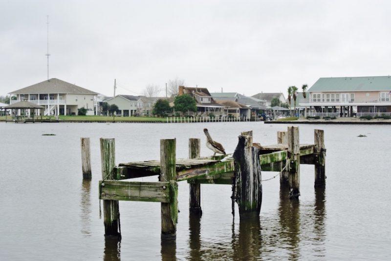 Louisiana, Hauer um Lafitte am Wasser