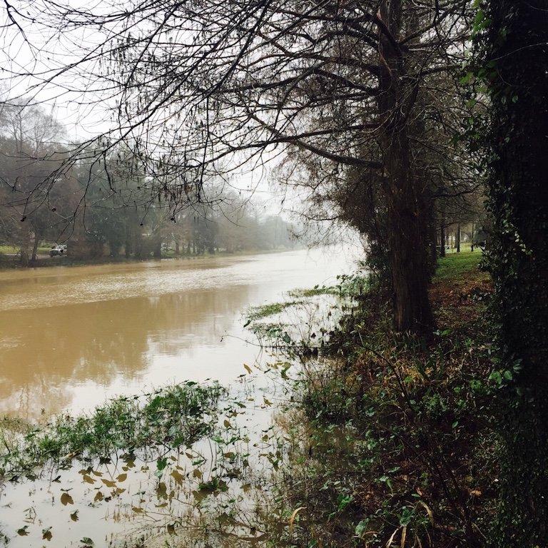 Sicht auf Fluss Zeche und Bäume in St. Martinville in Louisiana