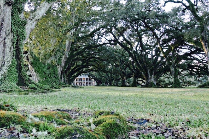 Villa morgens - Ausflug und eine Nacht auf Oak Alley Plantation in Louisiana