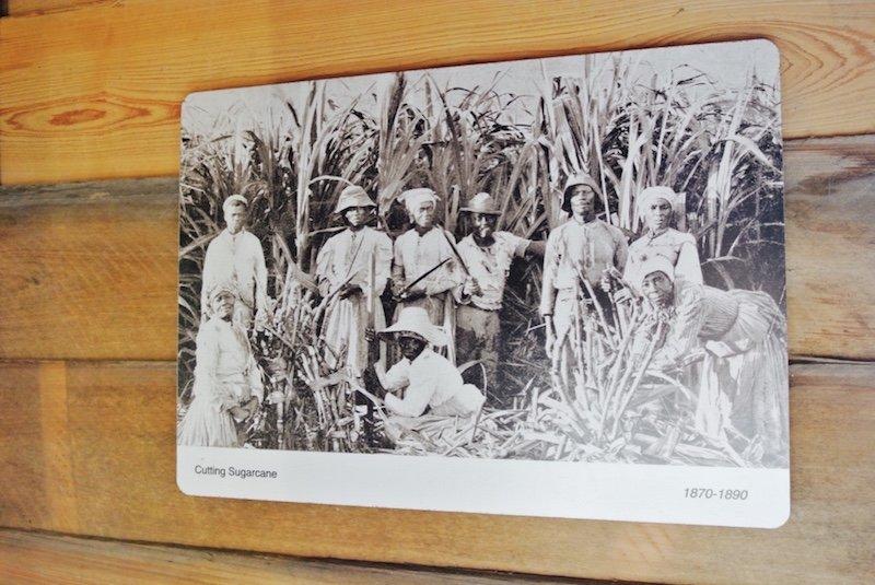 Sklaven - Ausflug und eine Nacht auf Oak Alley Plantation in Louisiana