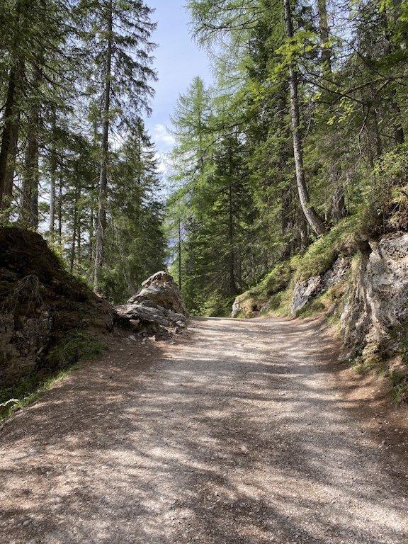 Pragser Wildsee - Natur und Rundweg