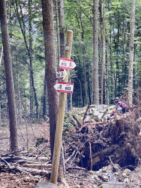 Schilder im Wald mit Trailbezeichnungen