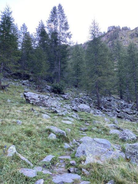 Wanderweg 106