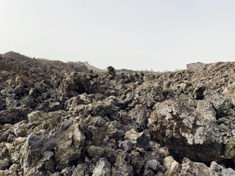 Lavafeld beim Chinyero Vulkan