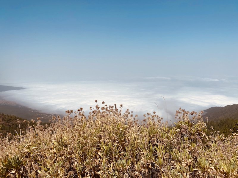 Blick vom Aussichtspunkt auf die Insel und Wolkenmeer Teneriffa