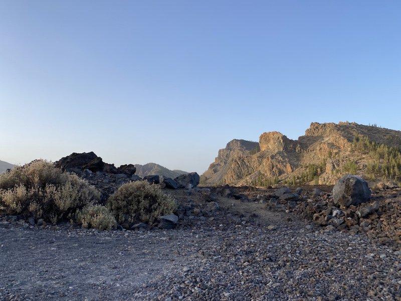 Blick auf Flora und Fauna der Canadas del Teide im Nationalpark