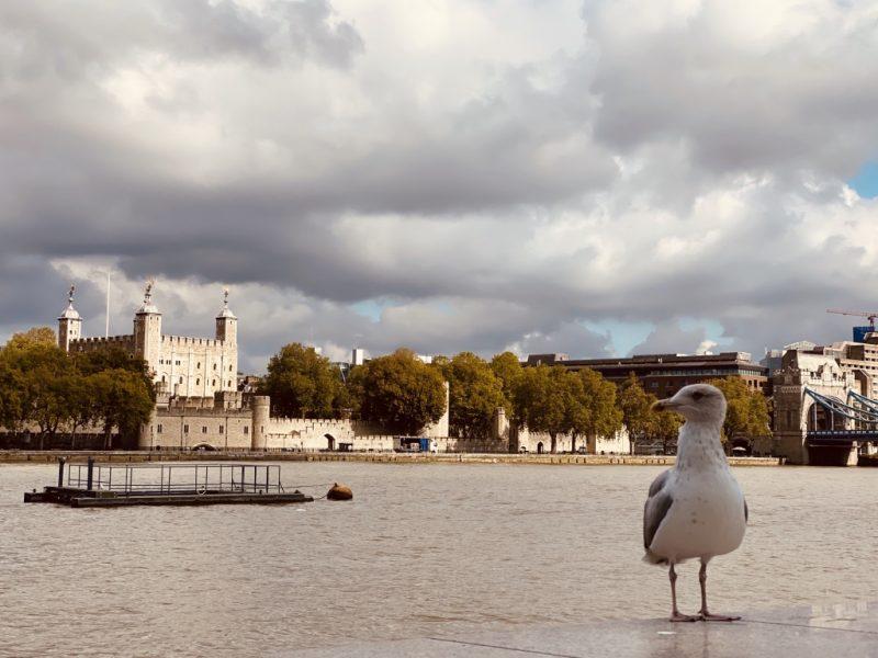 Blick auf den Tower of London mit Themse