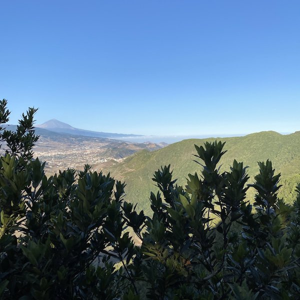 Aussicht auf Teneriffa am Mirardor Pico del Inglés