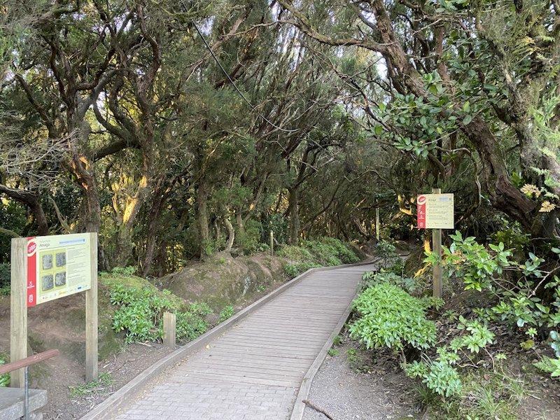 Eingang des Camino de los Sentidos auf Teneriffa