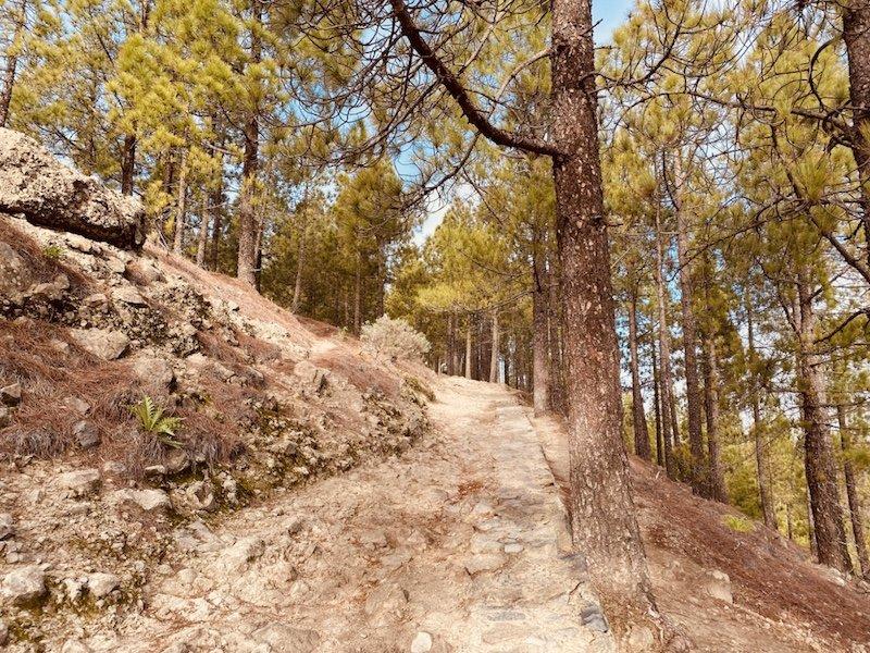 Aufstieg des Wanderweg zum Roque Nublo auf Gran Canaria