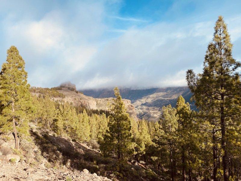 Wanderung zum Roque Nublo und Sicht auf die Bergwelt Gran Canarias