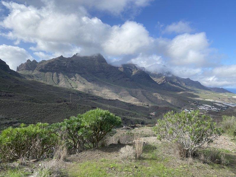 Blick in den Barranco de Veneguera auf Gran Canaria