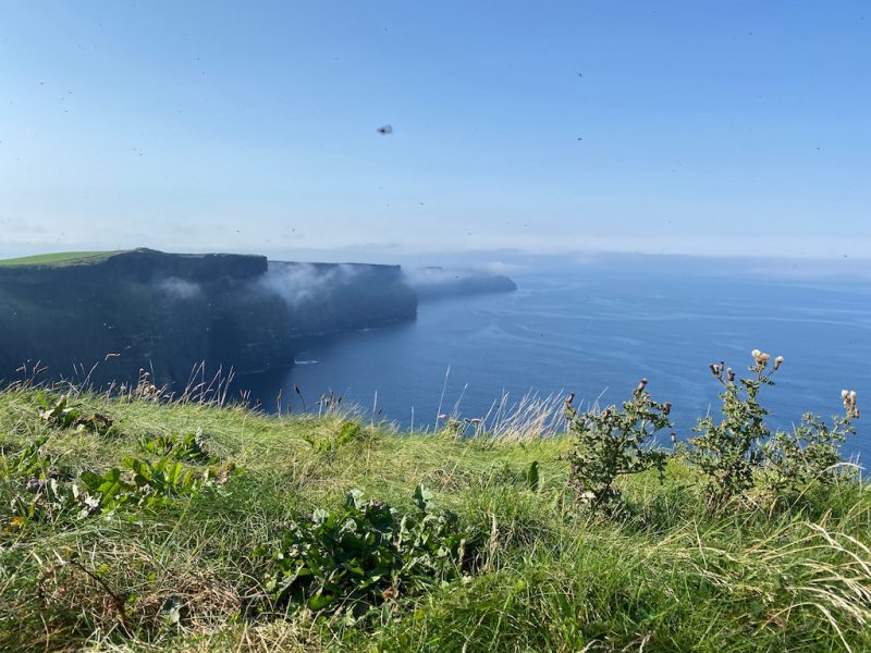 Ausflug Cliffs of Moher - Sicht auf Klippen und Ozean