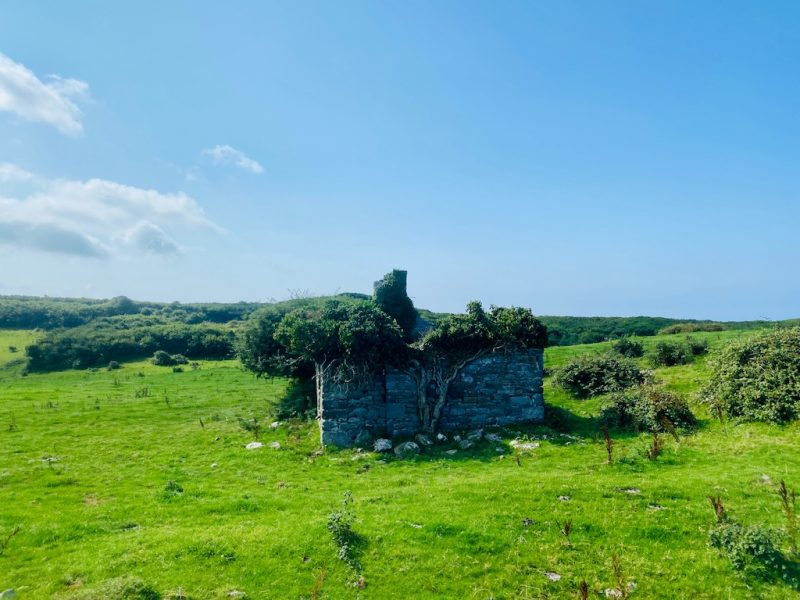 Verlassenes Cottage entlang der Wild Atlantic Route